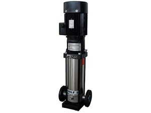 QDL/QDLF Type Light Stainless Steel Vertical Multistage Centrifugal Pump