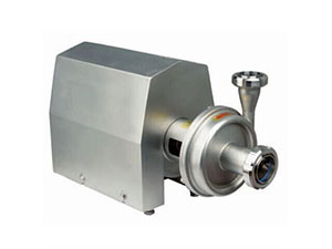WSB Sanitary stainless steel pump